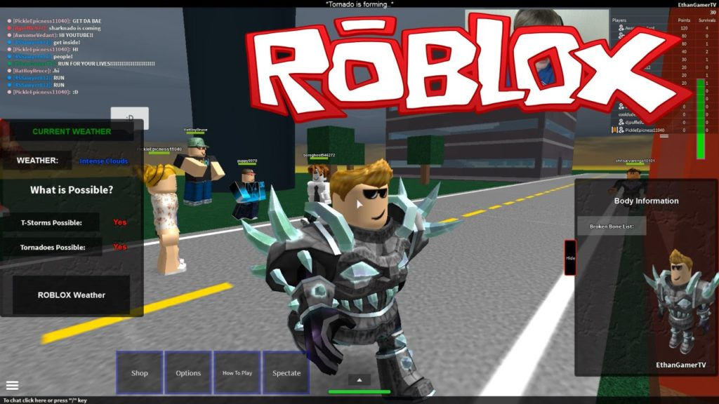 Roblox PC Image